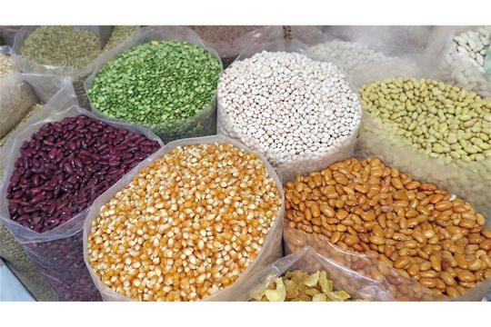 Antinutričné látky v potravinách
